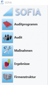 Auditsoftware Funktionen