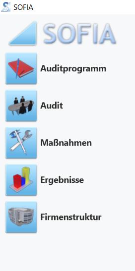 Vorbereiten, Durchführen und Auswerten von Audits in einem Auditprogramm (Audit - Software)