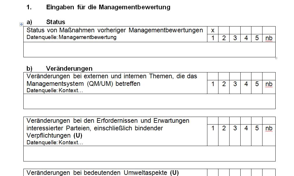 Vorlage für eine intergrierte Managementbewertung nach ISO 9001:2015 und ISO 14001:2015