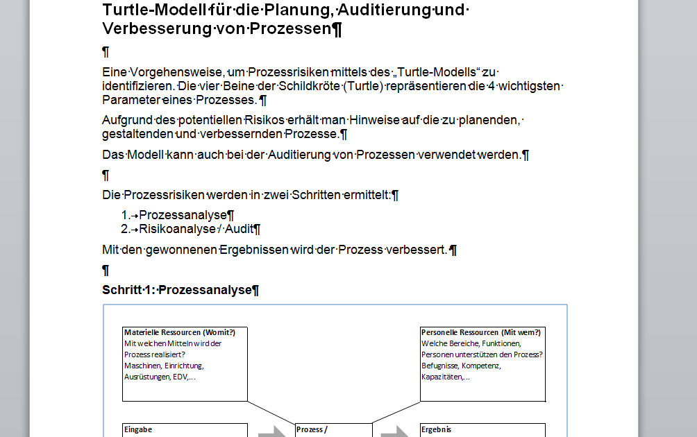 Prozess Planung Turtle Auszug aus Delta-Paket ISO 9001:2015